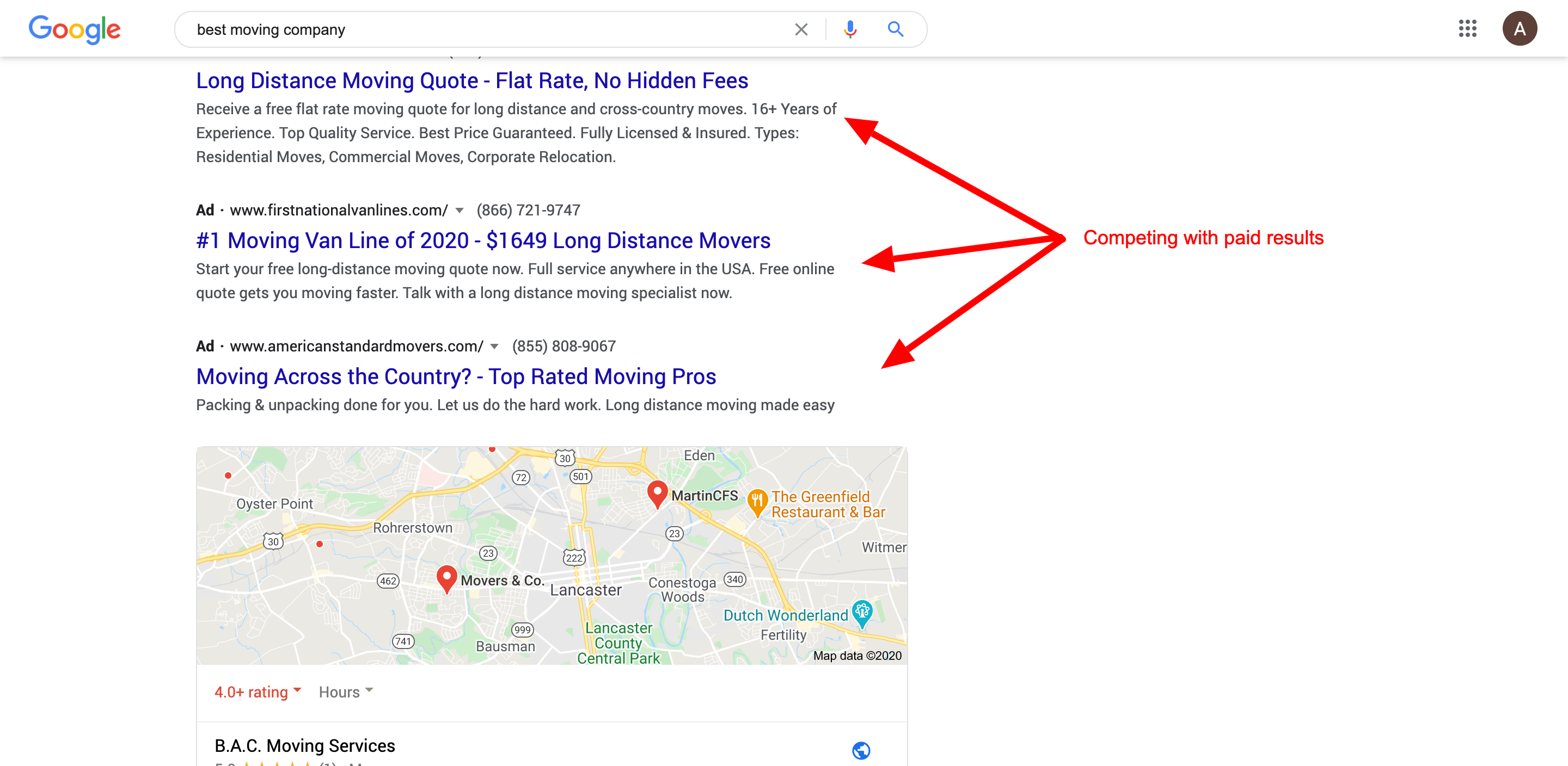 Google search results paid results